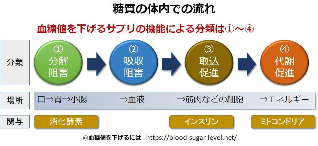 血糖値を下げる機能の分類図