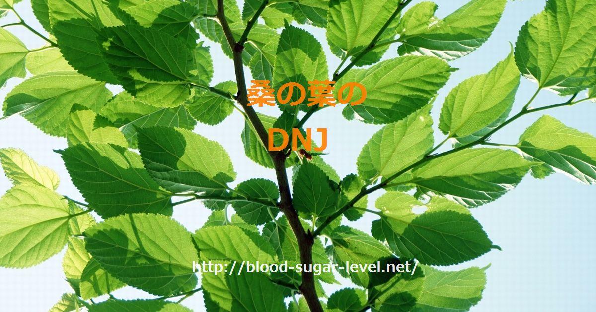 桑の葉のDNJ