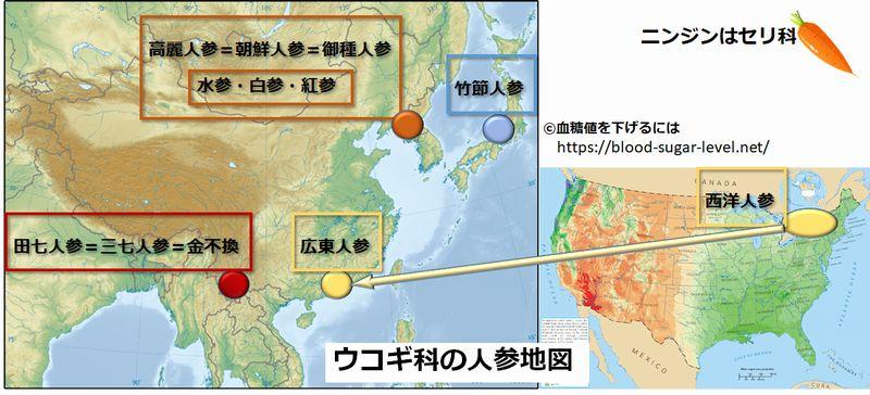 ウコギ科の人参地図